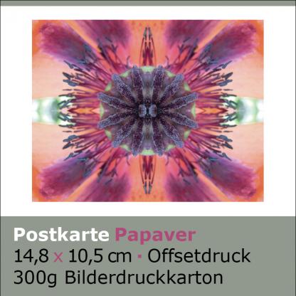 Postkarten Papaver